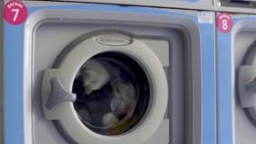 Βιομηχανικά καθαρίζοντας ενδύματα πλυντηρίων στο δωμάτιο πλυντηρίων, εγχώρια συσκευή φιλμ μικρού μήκους