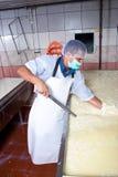 Βιομηχανικός εργάτης τυριών που ελέγχει τη ζύμωση στοκ εικόνες