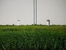 Βιομηχανικός ζαρωμένος τοίχος στον πράσινο τομέα Στοκ Φωτογραφία