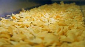 Βιομηχανικός μεταφορέας που κινεί τα ταξινομημένα τσιπ πατατών σε μια δυνατότητα φιλμ μικρού μήκους