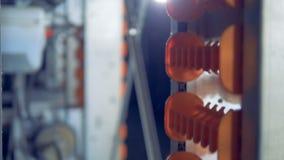 Βιομηχανικό σύστημα τους μηχανισμούς με τις διαδρομές για τα αυγά απόθεμα βίντεο