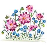 Βιολέτες και pansy και φύλλα λουλουδιών Watercolor στο λιβάδι Στοκ Φωτογραφίες