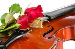 Βιολί και κόκκινα τριαντάφυλλα στοκ φωτογραφίες με δικαίωμα ελεύθερης χρήσης
