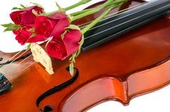 Βιολί και κόκκινα τριαντάφυλλα στοκ εικόνες