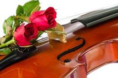Βιολί και κόκκινα τριαντάφυλλα στοκ φωτογραφίες