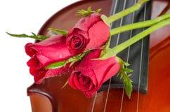 Βιολί και κόκκινα τριαντάφυλλα στοκ φωτογραφία με δικαίωμα ελεύθερης χρήσης