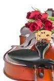 Βιολί και κόκκινα τριαντάφυλλα στοκ εικόνα με δικαίωμα ελεύθερης χρήσης