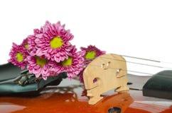 Βιολί και πορφυρή μαργαρίτα στο άσπρο υπόβαθρο στοκ εικόνες