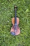 Βιολί στη χλόη Στοκ Εικόνες