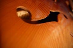 Βιολί στοκ φωτογραφία
