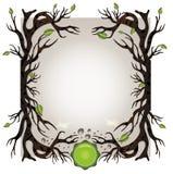 βιο δέντρο ανασκόπησης Στοκ Εικόνες