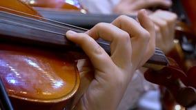Βιολιστές στην ορχήστρα απόθεμα βίντεο