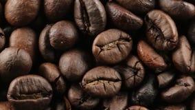 Βιο καφές της Βραζιλίας απόθεμα βίντεο
