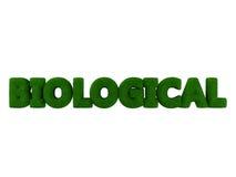 Βιολογική χλόη Word Στοκ Εικόνα
