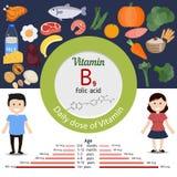 Βιταμίνη B9 ή φολικός όξινος infographic διανυσματική απεικόνιση