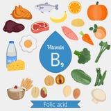 Βιταμίνη B9 ή φολικός όξινος infographic απεικόνιση αποθεμάτων