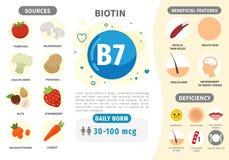 Βιταμίνη B7 Infographics απεικόνιση αποθεμάτων
