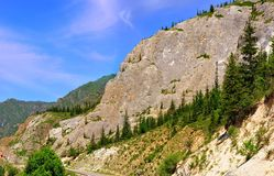 βλάστηση βράχου Στοκ φωτογραφία με δικαίωμα ελεύθερης χρήσης