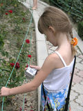 βλάστηση παιδιών φωτογρα&phi Στοκ φωτογραφία με δικαίωμα ελεύθερης χρήσης