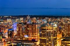 Βλαστός άνωθεν η όμορφη νύχτα στη μητρόπολη στοκ εικόνες