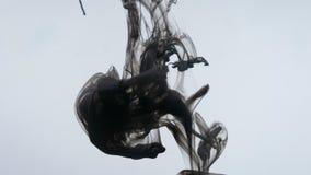 Βλαστός κινήσεων κινηματογραφήσεων σε πρώτο πλάνο του μαύρου μελανιού watercolor ακουαρελών που καταβρέχει και που μειώνεται σε έ απόθεμα βίντεο