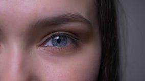Βλαστός μισό-προσώπου κινηματογραφήσεων σε πρώτο πλάνο του νέου ελκυστικού θηλυκού προσώπου με το μπλε λαμπιρίζοντας μάτι που ανα φιλμ μικρού μήκους