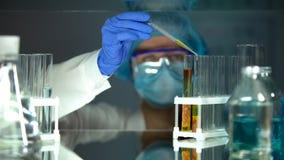 Βοηθός εργαστηρίων που στάζει το χημικό υγρό στο σωλήνα με το δείγμα κρέατος, ποιότητα τροφίμων στοκ εικόνες