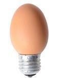 Βολβός αυγών στοκ εικόνα με δικαίωμα ελεύθερης χρήσης