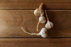 Βολβός σκόρδου στο ξύλινο εκλεκτής ποιότητας υπόβαθρο Στοκ φωτογραφία με δικαίωμα ελεύθερης χρήσης