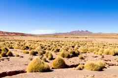 Βολιβιανό τοπίο βουνών, Βολιβία Στοκ φωτογραφία με δικαίωμα ελεύθερης χρήσης