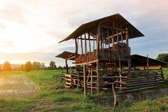 Βοοειδές-μάνδρα που χτίζεται των ξύλινων σανίδων στοκ φωτογραφίες με δικαίωμα ελεύθερης χρήσης