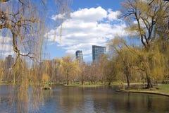 Βοστώνη κοινή Στοκ εικόνα με δικαίωμα ελεύθερης χρήσης