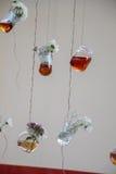 Βοτανικά μπουκάλια τσαγιού που κρεμούν στις σειρές Στοκ Φωτογραφίες