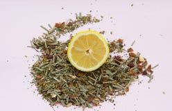 Βοτανικά τσάι και λεμόνι σε ένα ελαφρύ υπόβαθρο Στοκ φωτογραφία με δικαίωμα ελεύθερης χρήσης
