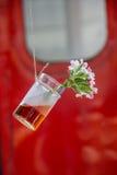 Βοτανική ένωση μπουκαλιών τσαγιού στη σειρά Στοκ φωτογραφία με δικαίωμα ελεύθερης χρήσης