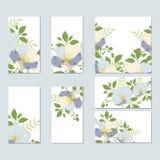 Βοτανική κάρτα με τα άγρια λουλούδια, φύλλα Στοκ Εικόνες