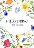 Βοτανική κάρτα με τα λουλούδια άνοιξη Στοκ Εικόνες