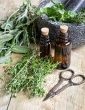 Βοτανική προετοιμασία Aromatherapy στο ξύλινο υπόβαθρο Στοκ φωτογραφία με δικαίωμα ελεύθερης χρήσης