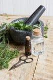 Βοτανική προετοιμασία Aromatherapy στο ξύλινο υπόβαθρο Στοκ φωτογραφίες με δικαίωμα ελεύθερης χρήσης