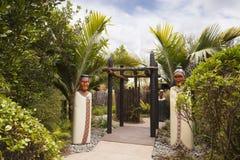 Βοτανικοί κήποι του Ώκλαντ στοκ εικόνες με δικαίωμα ελεύθερης χρήσης