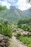 Βοτανικοί κήποι Kirstenbosch και βράχοι του Castle στον πίνακα Mountai Στοκ Εικόνες