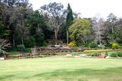 Βοτανικοί πάρκο και κήποι της Araluen στοκ φωτογραφίες με δικαίωμα ελεύθερης χρήσης