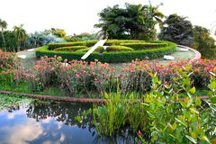 Βοτανικός κήπος, Δομινικανή Δημοκρατία Στοκ Φωτογραφία