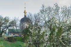 βοτανικός κήπος λεπτομέρειας Στοκ φωτογραφίες με δικαίωμα ελεύθερης χρήσης