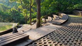 Βοτανικός κήπος με τους πιθήκους στο Μπαλί απόθεμα βίντεο