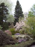 Βοτανικός κήπος στο awice WojsÅ 'δενδρολογικών κήπων στοκ φωτογραφίες