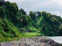 βοτανικός κήπος batumi Στοκ Εικόνες