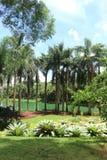 Βοτανικός κήπος Inhotim στοκ εικόνες