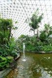 βοτανικός ο κήπος shan Σαγγά&e Στοκ Εικόνα