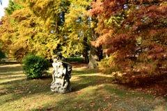 βοτανικό ανατολικό μακρινό πάρκο Ρωσία vladivostok Στοκ Φωτογραφία